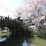 2017-04-13 photo 112